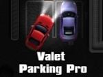 Valet Parking Pro on Gangofgamers.com
